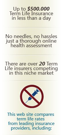 Term Life Online Quote Brilliant Buying Term Life Insurance At 74